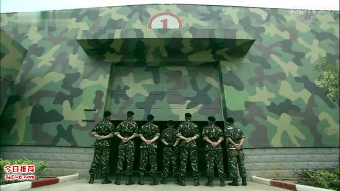 武警迷彩壁纸定制 部队餐厅军绿色墙纸 军事迷3d壁画