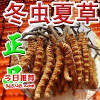 宝鸡市回收冬虫夏草べ产地5A精选べ统货べ礼盒零散べ不限价量