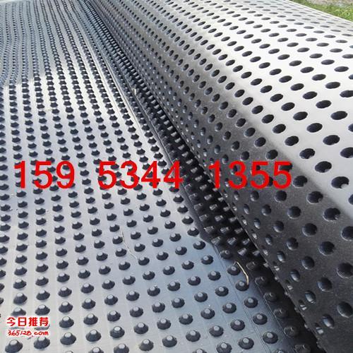 H20塑料排水板多少钱一平米
