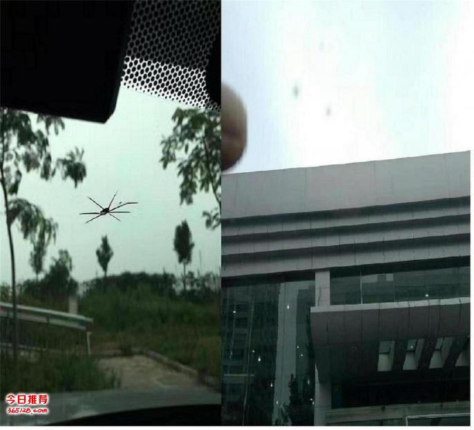 八月六号郑州汽车前挡风玻璃星状破损修复工作日志