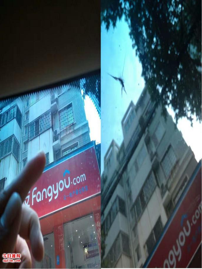 郑州神手汽车前挡风玻璃星状修复工作日志
