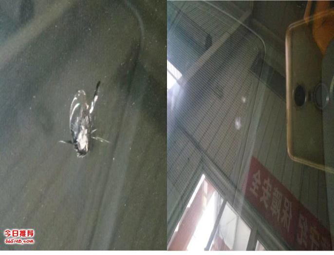 八月五号郑州汽车前挡风玻璃破损修复工作日志