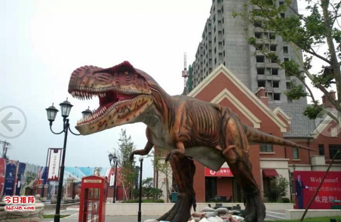 恐龙出租公司一手恐龙租赁