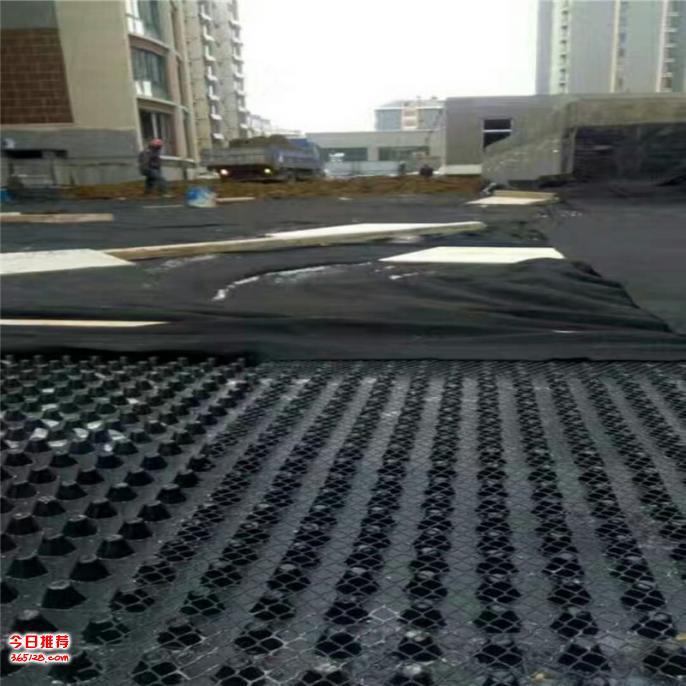 H12高塑料排水板价格