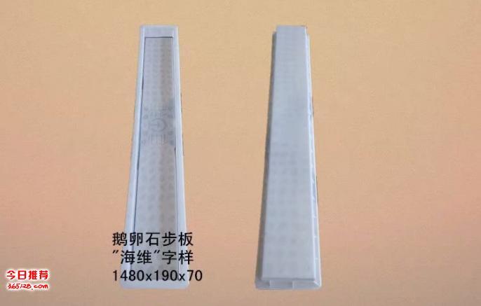 高鐵橋梁步板塑料模具,吊籃步板模具廠家直銷