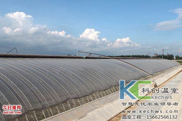 钢架日光温室大棚为例,分析具体造价如下:            上图:土墙日光
