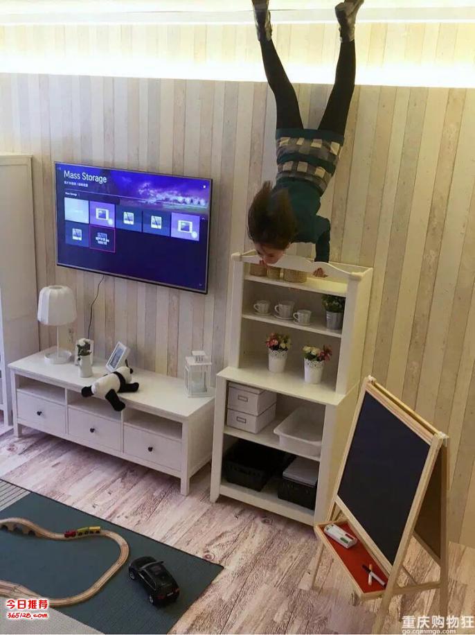 陕西铜川展示造型功夫熊猫租赁,不同创意颠倒屋租售