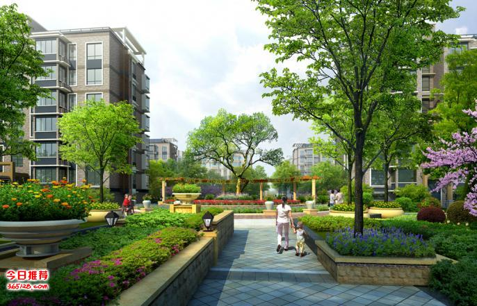 户外园林小区工厂绿化施工与养护砍树栽树花卉草坪种植