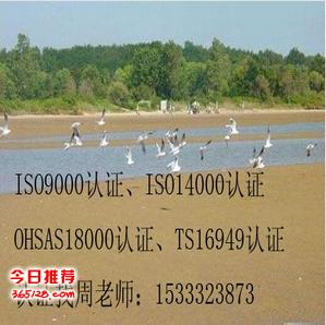 衡水ISO9000认证