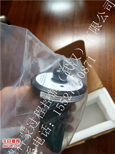 8-0108-0003-ISO 艾默生T1056浊度仪传感器