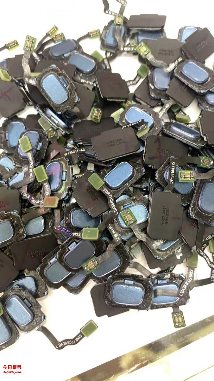回收指纹芯片 回收指纹IC