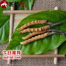 湘潭回收虫草-湘潭回收洋酒-湘潭虫草回收