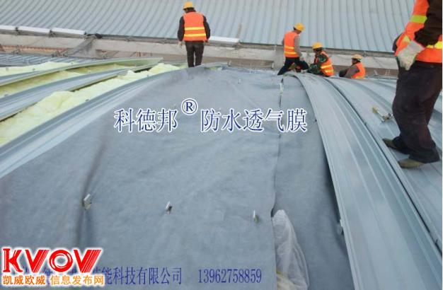 0.49MM高密度纺粘聚乙烯聚丙烯防水透气膜