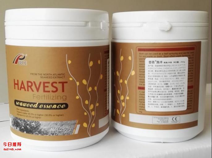 普蓓-施丰 纯天然海藻生物激活素
