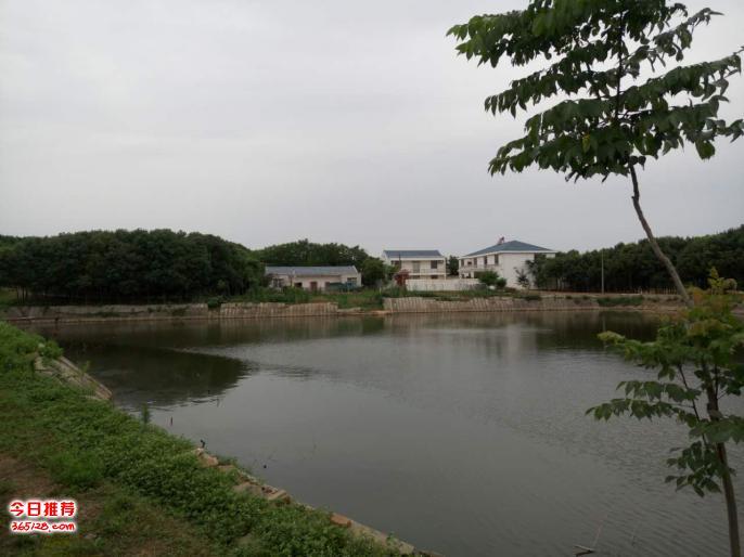 武汉近效农场出租