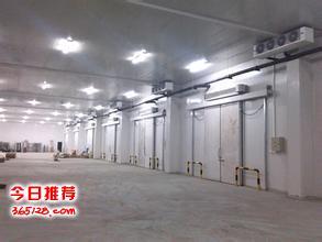 上海专业二手冷库回收公司、工业冷库回收