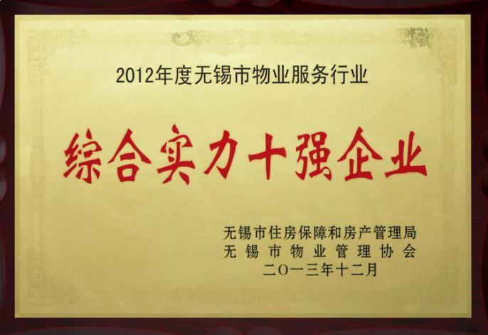 2012年度综合实力十强