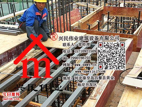 新型建筑模板支撑体系【今日推荐秦皇岛建材】