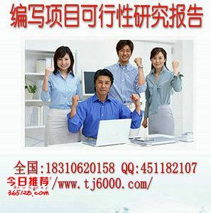 天津市和平区代写项目可行性研究报告