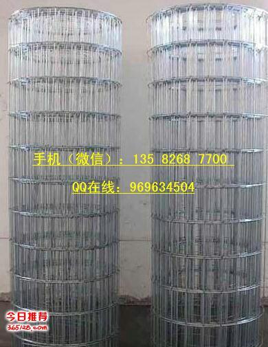 供货仙桃电焊网、金属碰焊网、铁丝焊接网,外形1*2米