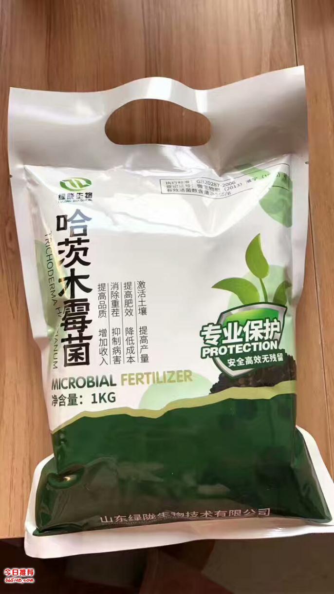 厂家直供山东绿陇生物哈茨木霉菌剂防治作物真菌病害