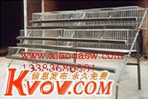 鸡鸽兔笼养殖笼具养殖设备料盒食盒