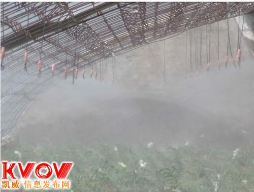 鲜花蔬菜种植大棚苗圊喷雾加湿洒药施肥器