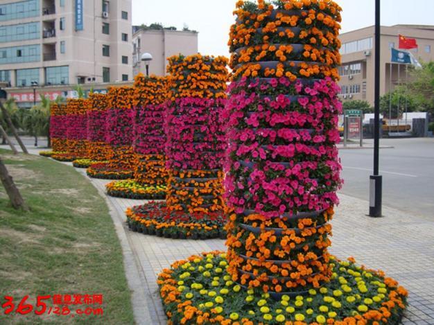 专业承接五色草造型,山东立体花坛制作,山东青州立体绿化组合花盆