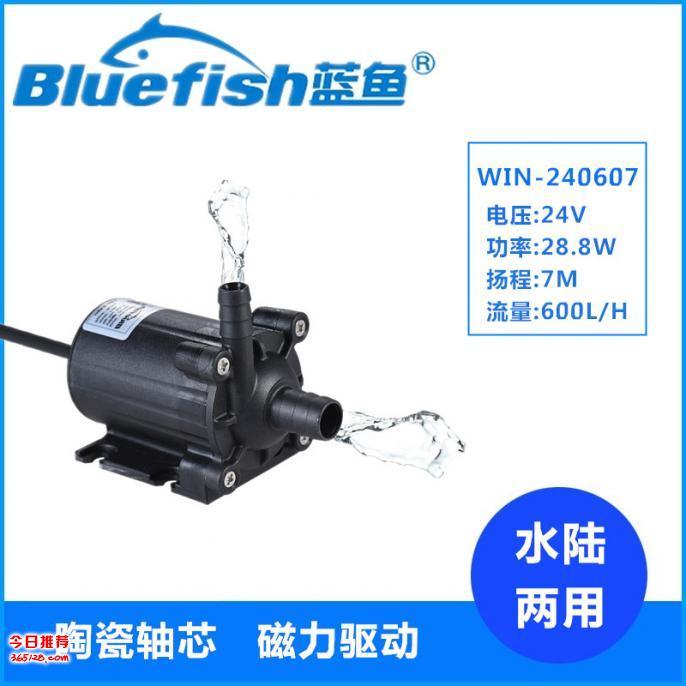 蓝鱼WIN-240607假山鱼池抽水泵