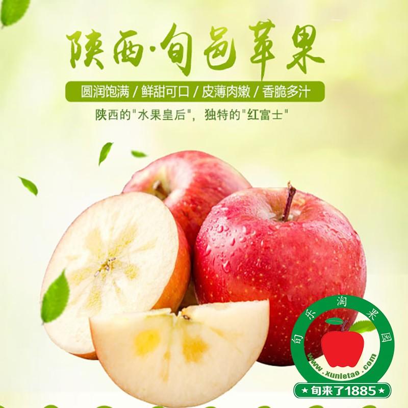 陕西旬邑苹果
