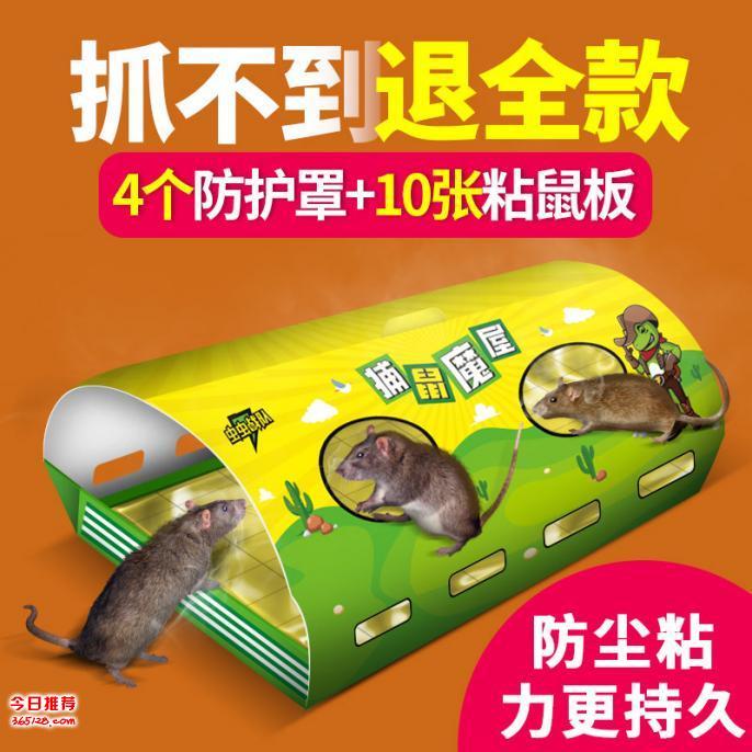 捕鼠魔屋粘鼠板捕鼠器灭鼠药灭鼠